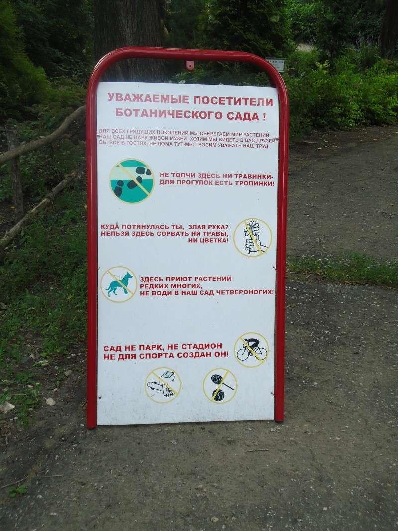 Самара: Ботанический Сад - Страница 2 Dsc04919