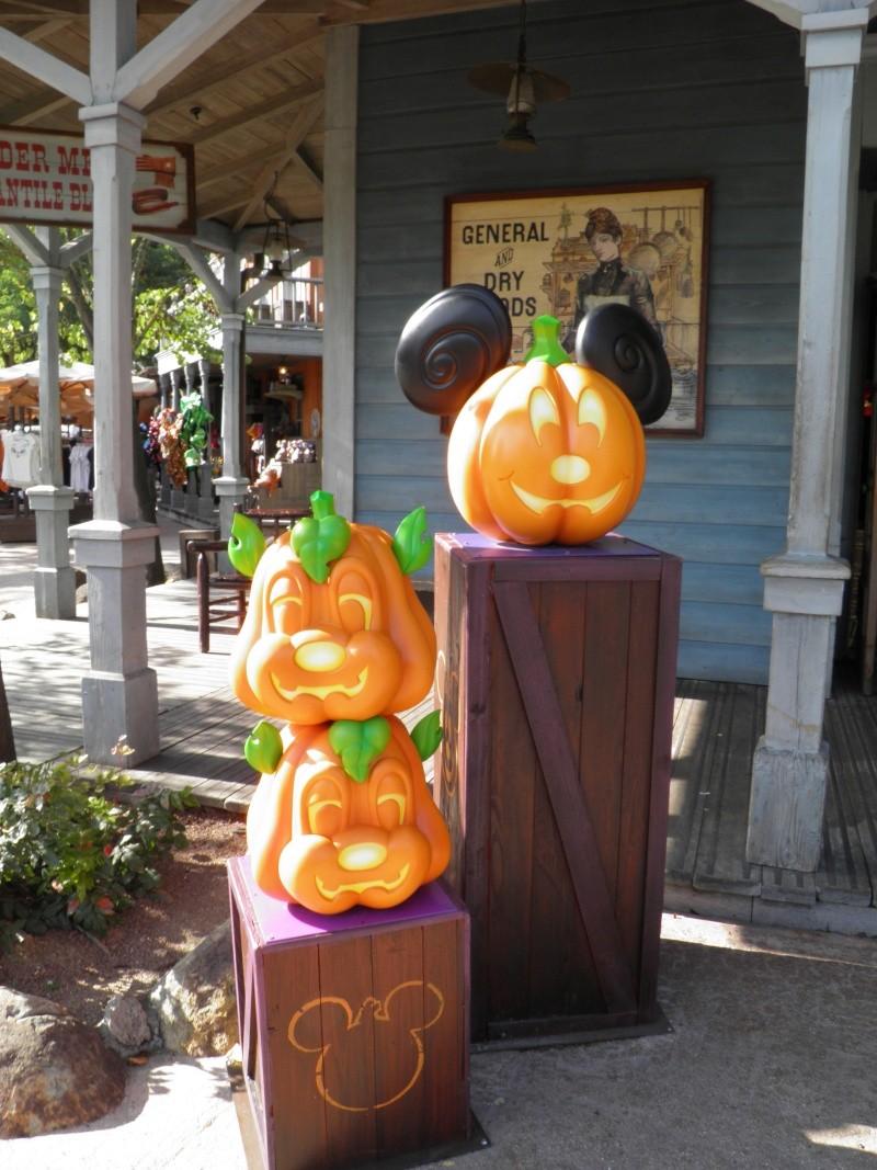 Halloween 2011 (1er au 31 octobre 2011) - Page 3 P9230613