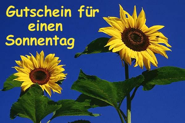 Birgit Burzelt Sonnen18