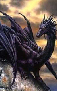 https://i.servimg.com/u/f48/15/48/00/54/dragon12.png