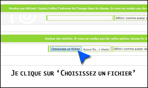 Problème avec la galerie des avatars Faexpa10