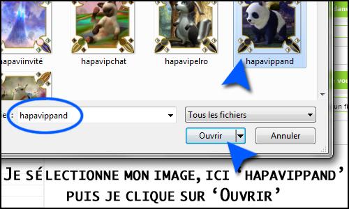 Problème avec la galerie des avatars Faexpa11