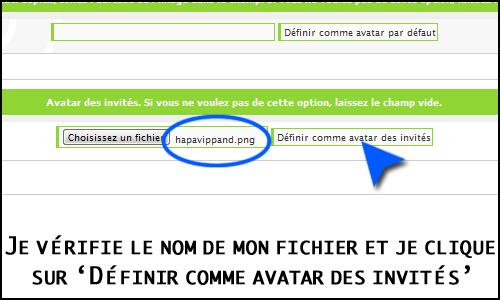 Problème avec la galerie des avatars Faexpa12