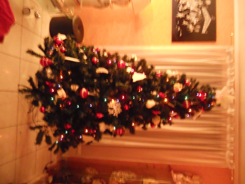 Bientôt Noël! Dscn4811