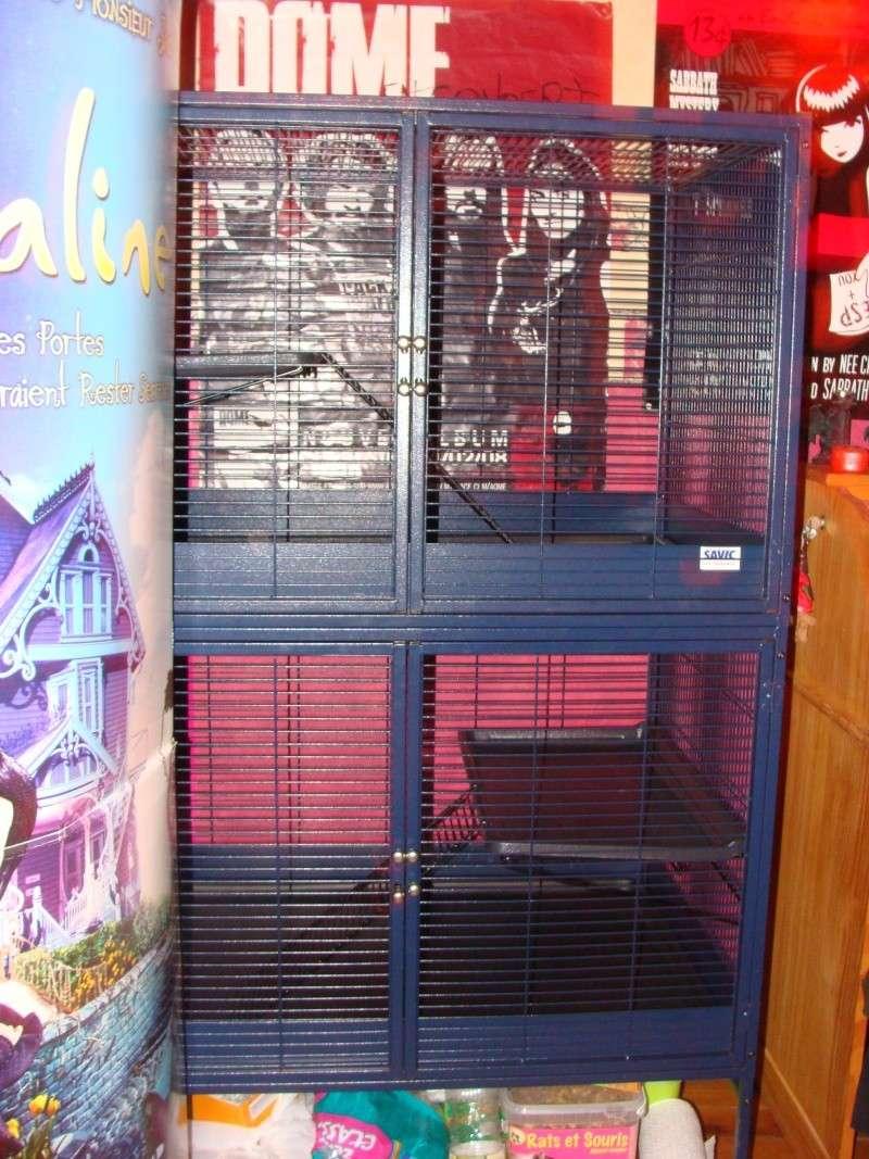 Vends cage savic royal suite 95 double Dsc05817