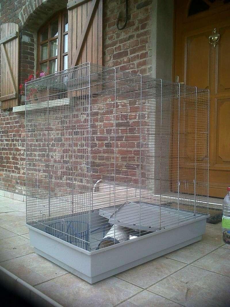 Vends cage Jenny dans le 80/02/59 Img00210