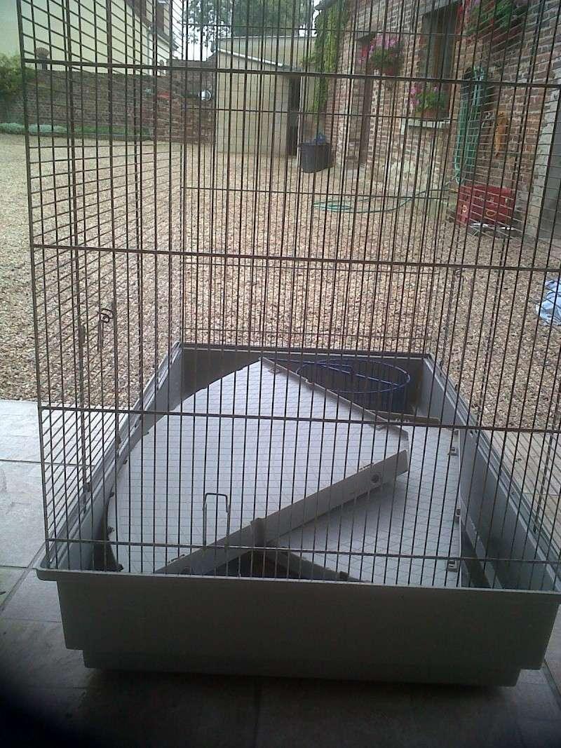 Vends cage Jenny dans le 80/02/59 Img00211