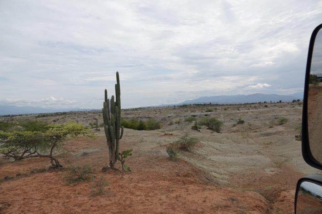 LE DESERT DE TATACOA Dsc01615