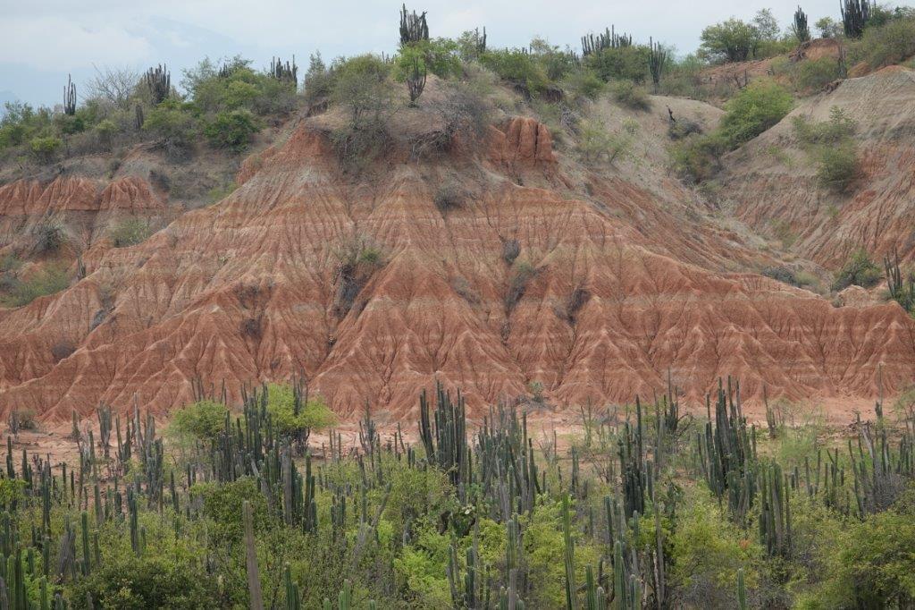 LE DESERT DE TATACOA Dsc01620