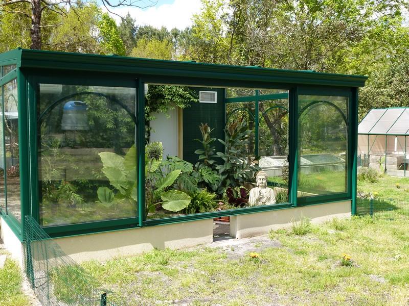 regroupement ici de vos terrariums et serres P1000012
