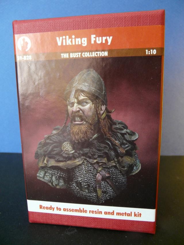 Viking en colère 0114