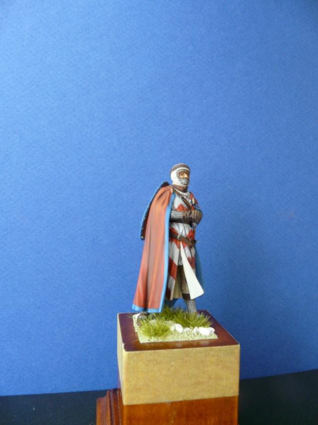 Mes chevaliers en cours - Page 3 D210