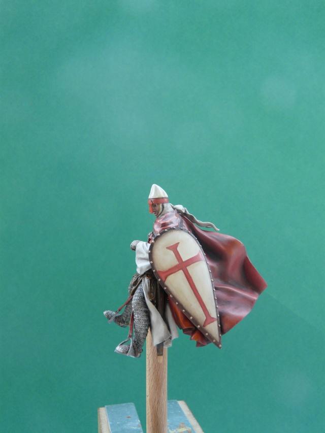 Mes chevaliers en cours P1060012