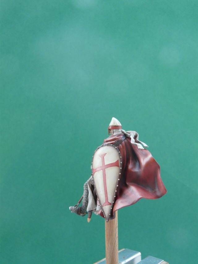 Mes chevaliers en cours P1060013
