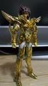 [Novembre 2011] Phoenix Ikki God Cloth (O.C.E.)  - Pagina 6 Image215