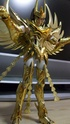 [Novembre 2011] Phoenix Ikki God Cloth (O.C.E.)  - Pagina 6 Image415