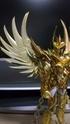 [Novembre 2011] Phoenix Ikki God Cloth (O.C.E.)  - Pagina 6 Image515