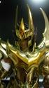 [Novembre 2011] Phoenix Ikki God Cloth (O.C.E.)  - Pagina 6 Image615
