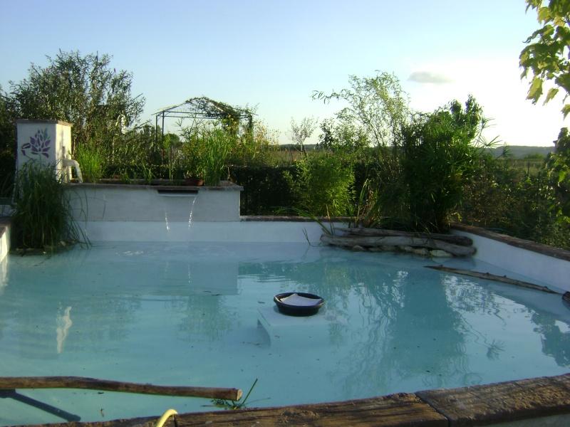 Mon projet de bassin dans le sud ouest 4611