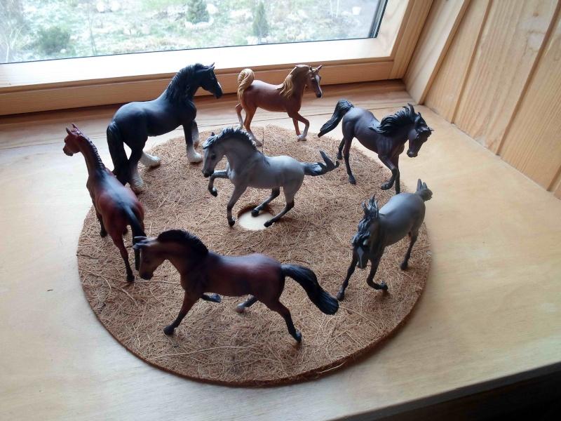 Nice CollectA Horses 2011-2012 has broke my heart! ;) Sam_2110