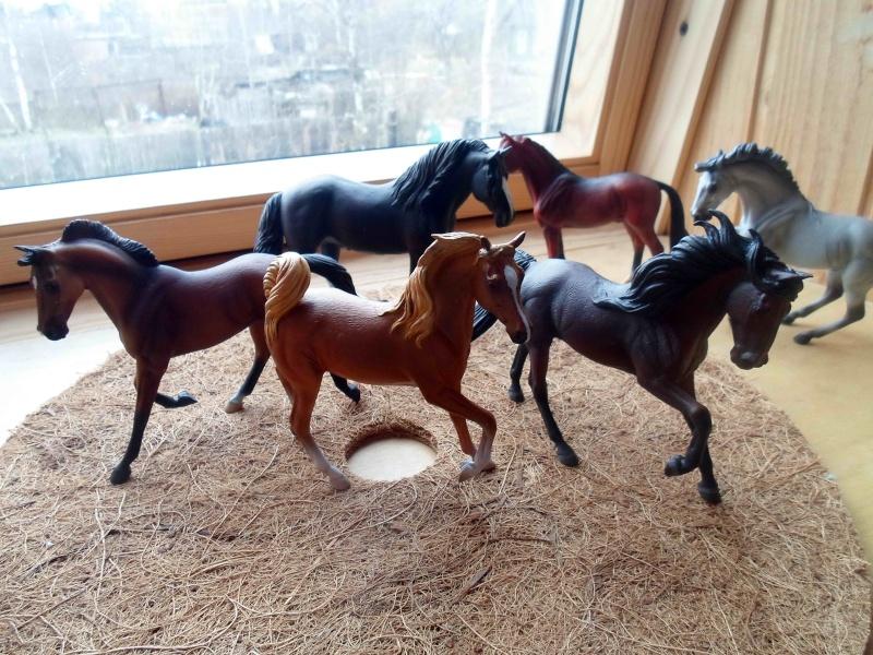 Nice CollectA Horses 2011-2012 has broke my heart! ;) Sam_2112