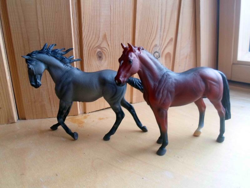 Nice CollectA Horses 2011-2012 has broke my heart! ;) Sam_2118