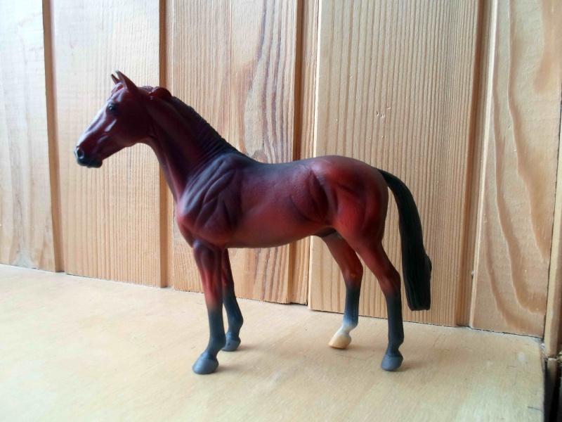 Nice CollectA Horses 2011-2012 has broke my heart! ;) Sam_2120