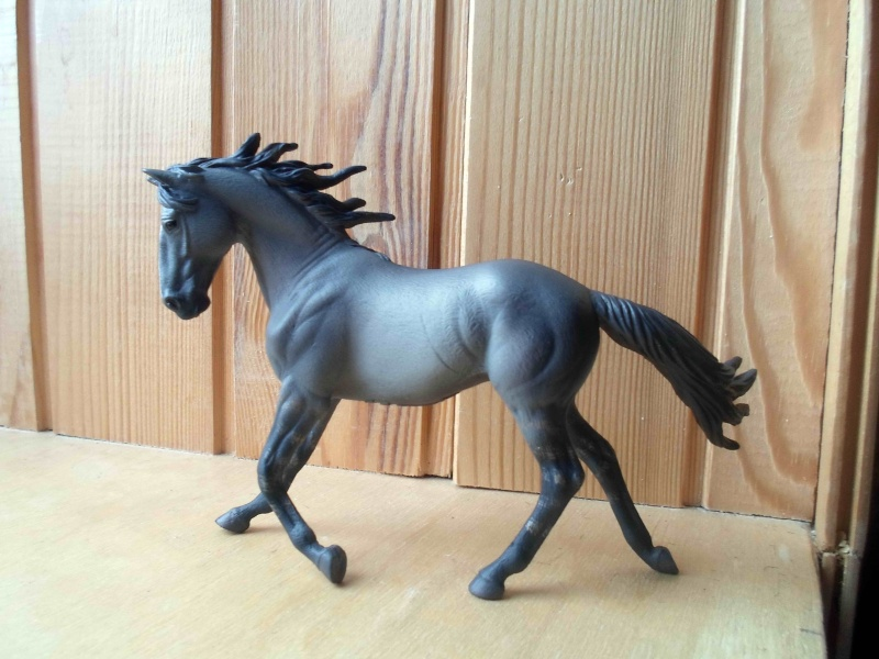 Nice CollectA Horses 2011-2012 has broke my heart! ;) Sam_2123