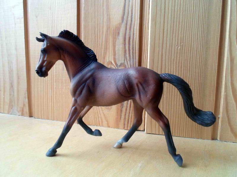Nice CollectA Horses 2011-2012 has broke my heart! ;) Sam_2124