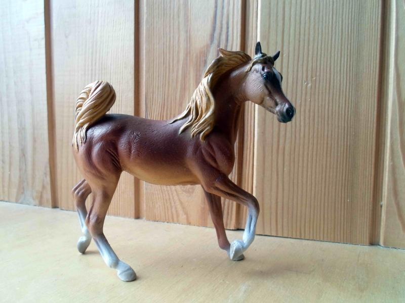 Nice CollectA Horses 2011-2012 has broke my heart! ;) Sam_2126