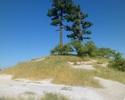 An der Ostseeküste..... Sam_1515