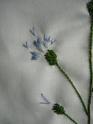 La broderie du bouquet Dscn8521