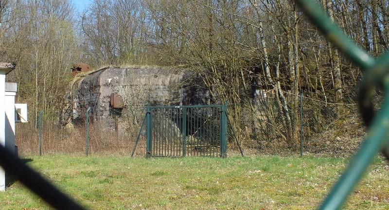 PO du Kerfent (SF de Faulquemont) Dscf1217