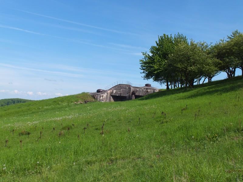 PO de l'Einseling (SF de Faulquemont) Dscf1451