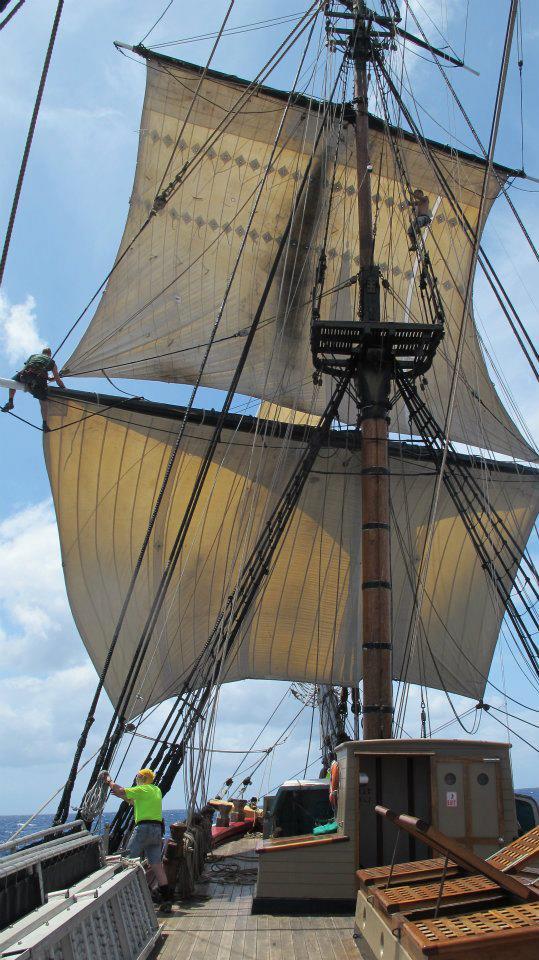 Les plus belle photos du HMS Bounty 15453310