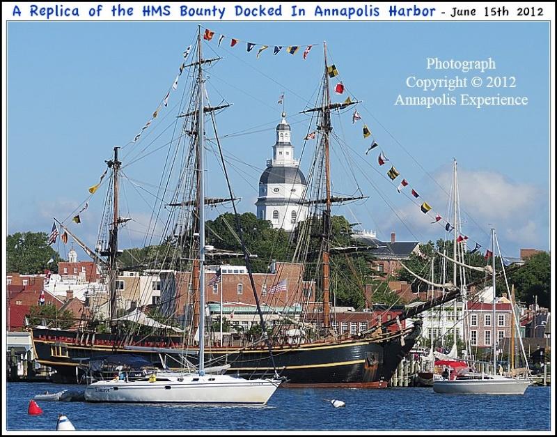 Les plus belle photos du HMS Bounty 18125210