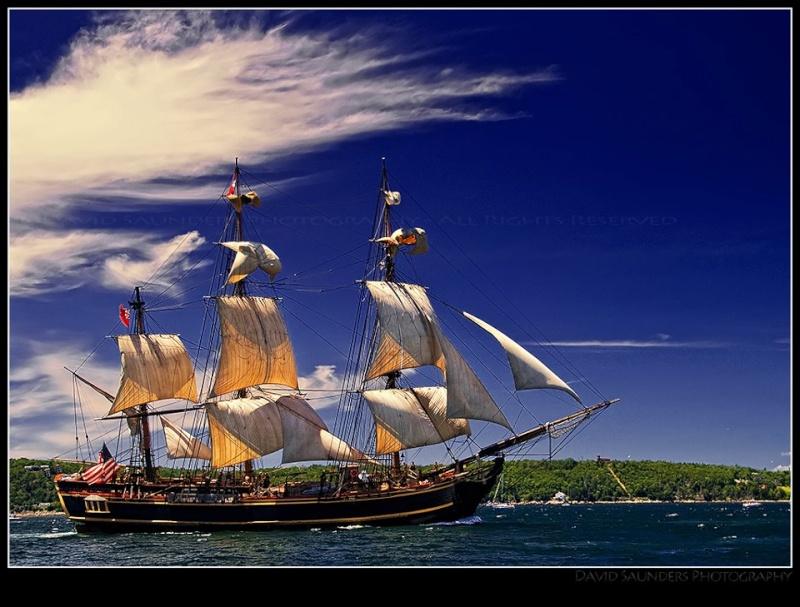 Les plus belle photos du HMS Bounty - Page 2 29436510