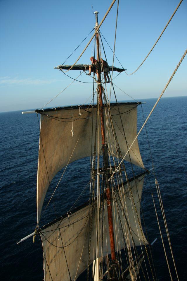 Les plus belle photos du HMS Bounty - Page 2 30247210