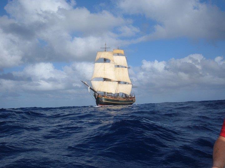 Les plus belle photos du HMS Bounty - Page 2 30406310