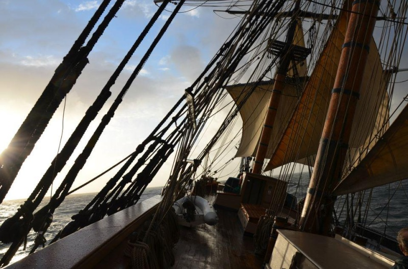 Les plus belle photos du HMS Bounty - Page 2 31099210