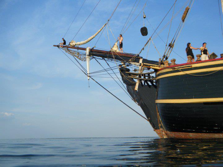 Les plus belle photos du HMS Bounty - Page 2 31253710