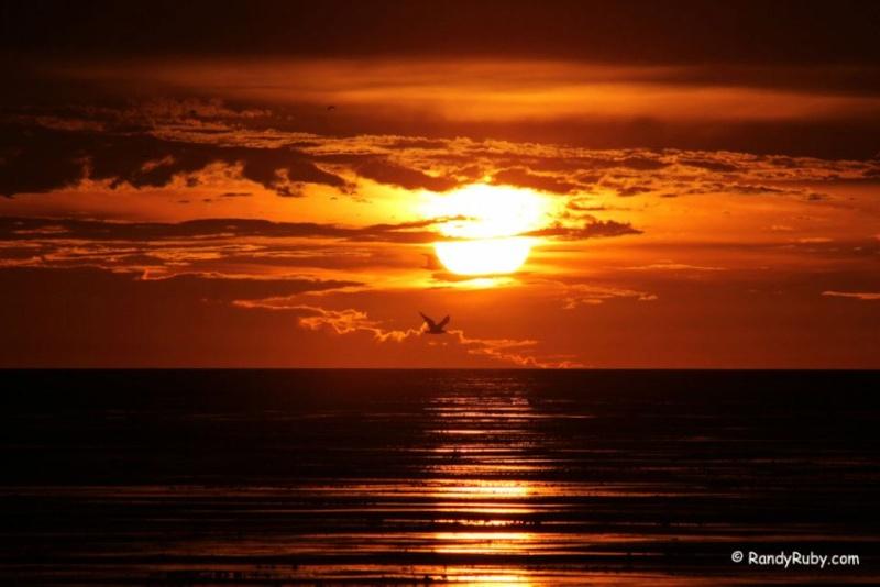 les plus belle photos de couchers de soleil - Page 4 31484110