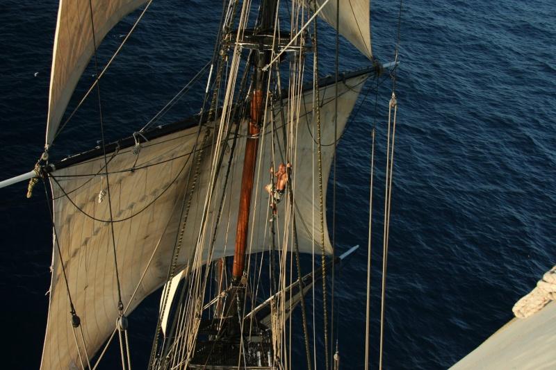 Les plus belle photos du HMS Bounty - Page 3 32454810