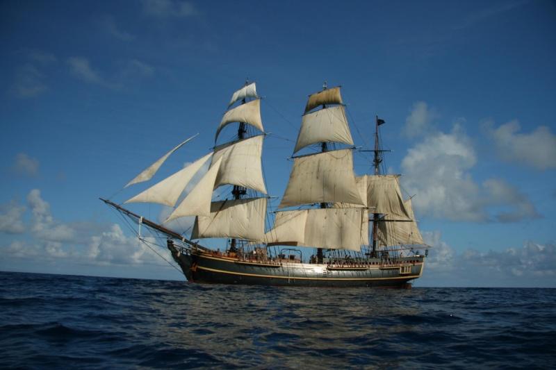 Les plus belle photos du HMS Bounty - Page 3 33001410