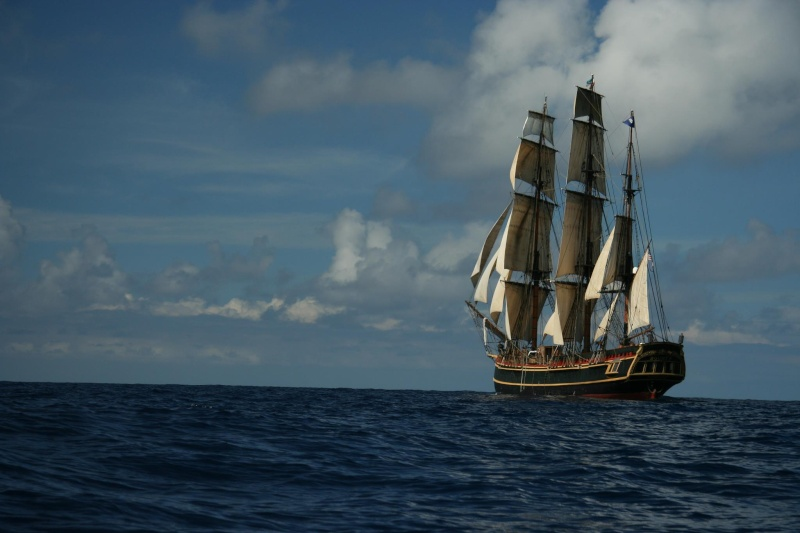 Les plus belle photos du HMS Bounty - Page 4 41196710