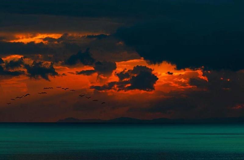 les plus belle photos de couchers de soleil - Page 3 55725310