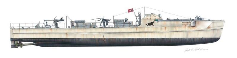 histoire des torpedo de 1863 à 1945 Photoz29