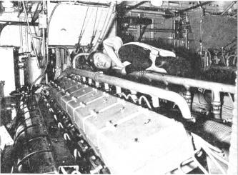 Schnellboot  ( Vedettes lance-torpilles) Sengin14