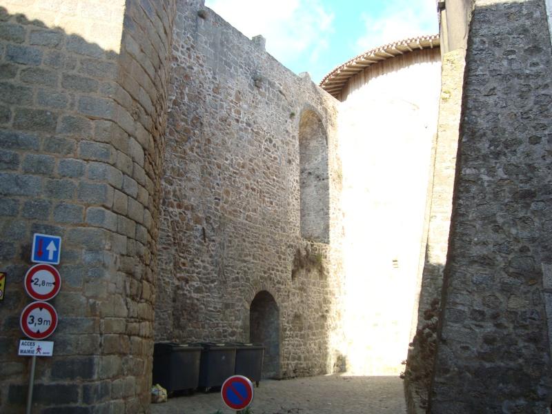 Ville, citadelle et château de Parthenay Dsc02321