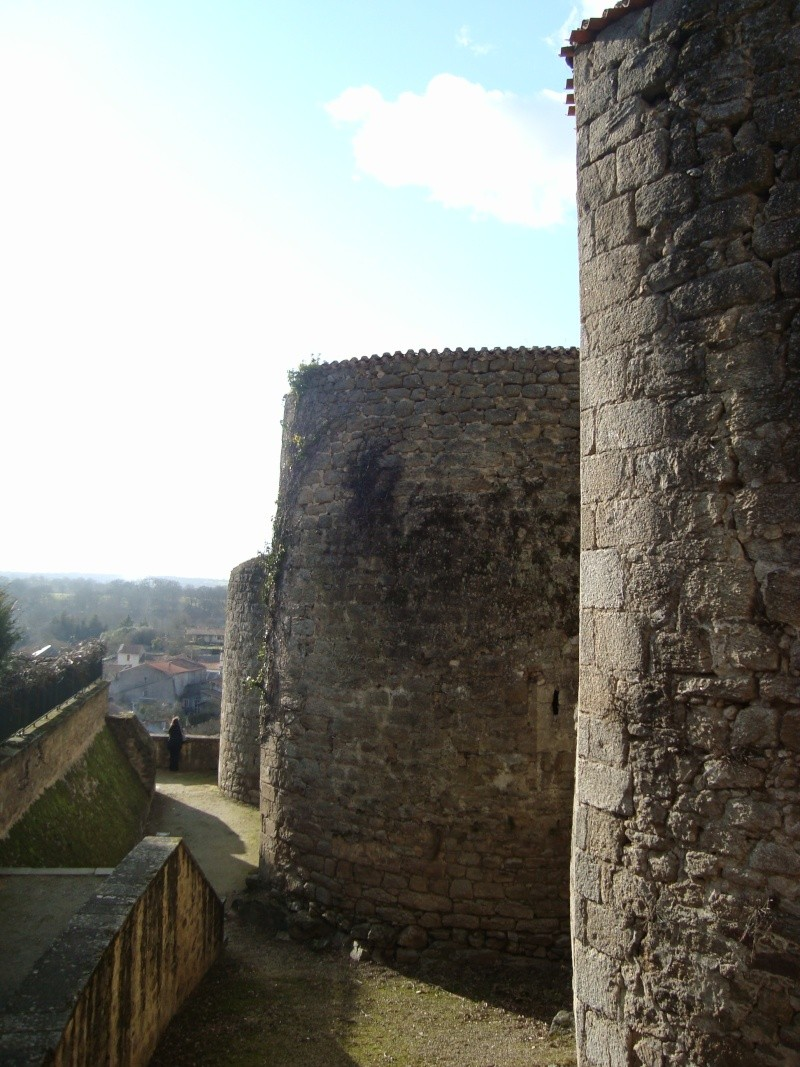 Ville, citadelle et château de Parthenay Dsc02323